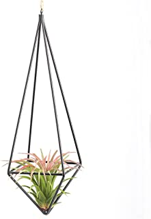 Modern Rustic Art Style Freestanding Hanging Metal Tillandsia Air Plant Rack Holder Black 10 inches Height Quadrilateral Pyramid Shape Geometric Hollow Flower pots