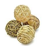 Niteangel Small Animal Activity Toy, Fun Pet Balls (Pack of 4)