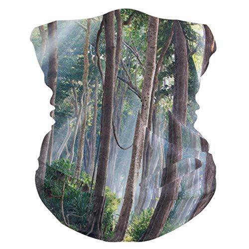 YUIT Magical Forest Headband Womens Bandana Multifunctional Mens Balaclava, Neck Warmer, Mascarilla, Collares Hatliner