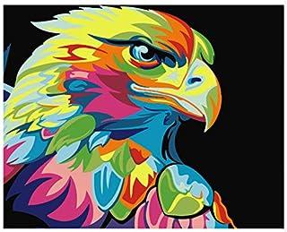 Agolong Malen nach Zahlen DIY gerahmte Ölfarbe Bilder Wand Kunst Kunst Kunst Home Decor einzigartiges Geschenk mit Rahmen 40  50 cm B07MDCN855  Bestellungen sind willkommen 289693