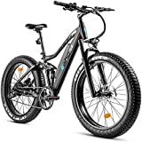 eAhora XC200 750W 4.0' Fat Tire Mountain Electric Bike 48V Urban Electric Bikes for Adults with 14AH Removable Ebike Battery, Dual Disc Brakes, Front Suspension, E-PAS Recharge System, 7-Speed Gears