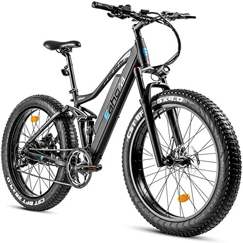 eAhora AM200 750W 4.0' Fat Tire Mountain Electric Bike 48V Urban Electric Bikes for Adults with Hydraulic Brakes, Air Suspension, USB Port Password Display, E-PAS Recharge System, 9-Speed Gears