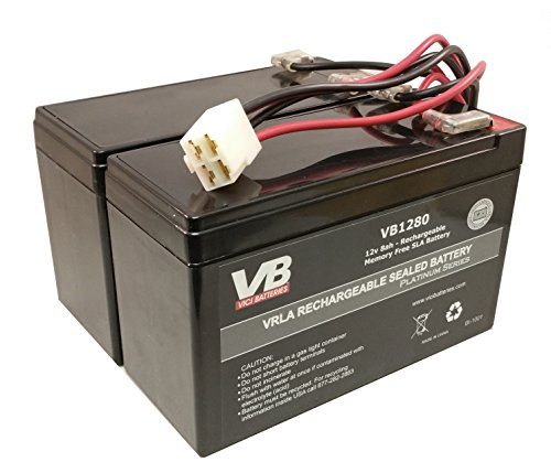 Razor Scooter Battery for e200 (Versions 8-12) & e300 (Versions 5-10 & 12) VICI Brand High Performance - Set of 2 Includes New Wiring Harness
