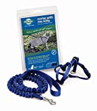 Best cat harness - PetSafe Come With Me Kitty Harness and Bungee Review