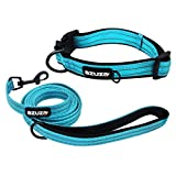 azuza Durable Padded Dog Leash and Collar Set,Reflective Strip Extra Safe and Comfy for Small...