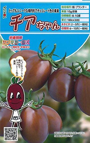 【チアちゃん】ミニトマトの種 (8粒)