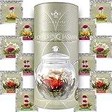 Teabloom Jasmine Flowering Tea – Hand Tied Green Tea Leaves + Jasmine Blossoms Flowering Tea Creations – Blooming Tea Gift Set – 12-Pack, 36 Steeps, Makes 250 Cups