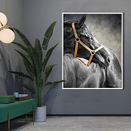 SADHAF Zwarte Paard Poster Moderne Print Dier Doek Print Muur Art Foto Art Design Kamer Home Decoratie 70X100cm (no frame) A6