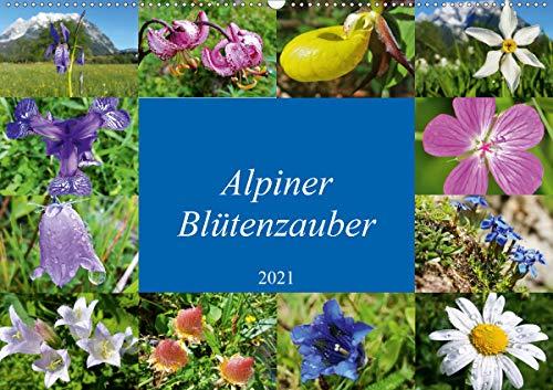 Alpiner Blütenzauber (Wandkalender 2021 DIN A2 quer)