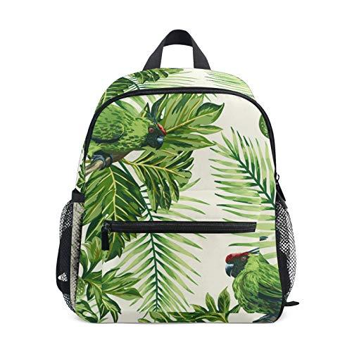 JinDoDo Kids Backpack Tropical Bird Parrot Flower Children's School Bag for Kindergarte Preschool Boys Girls with Chest Clip