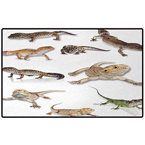 Reptile Indoor Outdoor Rug Colorful Staring Leopard Gecko Family Image Primitive Reptiles Wildlife Art Print 60x30 Funny Doormats Anti-Slip Mat for Entrance Way