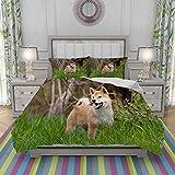 VICCHYY Ensemble de Housse de Couette,Literie,Adorable Shiba Inu Puppy Outdoors,Microfibre,140x200cm avec 2 Taies Doreiller 50x80cm