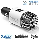 TwinkleBirds Car Air Purifier Ionizer - 12V Plug-in Ionic...