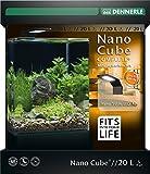 Dennerle Nano Cube Complete+ 20 Liter - Mini Aquarium mit Abgerundeter Frontscheibe - Komplett-Set