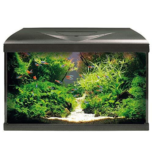 Amtra System 60 LED Black/Acquario Completo di Illuminazione LED, Filtro e riscaldatore/cm 60x32x42 / 60 Litri