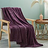 Simple&Opulence Solid Coral Jacquard Dot Velvet 50 X 60-Inches Throw Blanket, Purple