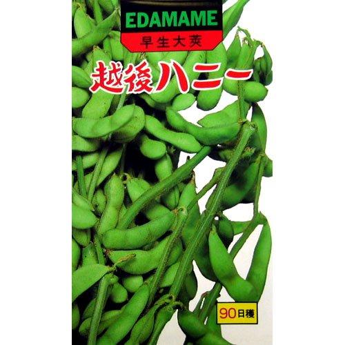 枝豆 種 越後ハニー 小袋(約60ml)
