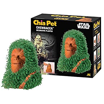 Chia CP430-01 Pet Star Wars Chewbacca with Seed Pack Decorative Pottery Planter Easy to Do and Fun to Grow Novelty Gift Perfect for Any Occasion Terra Cotta