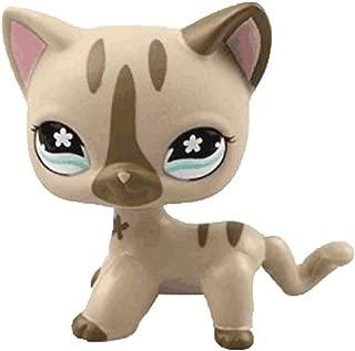 Meidexian888 Rare Littlest Pet Shop , Child Figure Toy 2.5 inches Cream Tan Rainbow Eyes Cat Loose Cute