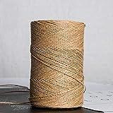 LINFA 500G / Roll Hilo de Paja de Rafia para Tejer a Mano Sombrero de Paja de Verano Bolsos Hilo orgánico CrochetMaterial Hecho aMano, café Oscuro