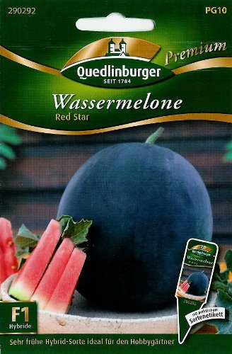 Wassermelone, Red Star F1