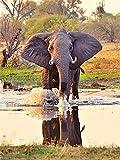 Rompecabezas De 1000 Piezas,Serie De Animales Waterside Elephant Wooden Family Puzzle Set, Desafío Cerebral Para Niños Jigsaw Games, Rompecabezas Intelectuales De Educación Padre-Hijo Juguete, Dec