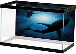 bybyhome HD Aquarium Background Shark,Grunge Style Big and Small Sharks with Open Mouths Predator Jaws Dangerous Image,Royal Blue Underwater World Backdrop