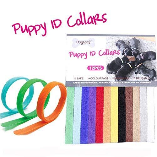 Puppy ID Collier 12 couleurs doux Bandes Velcro réglable