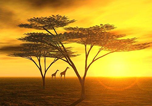 wandmotiv24 Fototapete Afrika landschaft XS 150 x 105cm - 3 Teile Fototapeten, Wandbild, Motivtapeten, Vlies-Tapeten Sonnenuntergang M0042