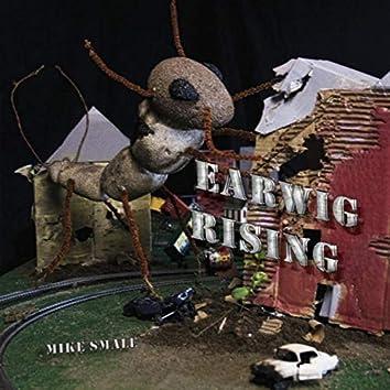 Earwig Rising