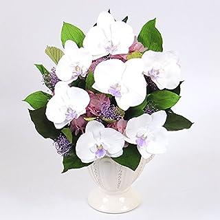胡蝶蘭ブリリアント 【パープル×ピンク】/プリザーブドフラワー/母の日/父の日