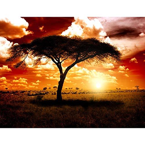 Runa Art Fototapete Afrika Sonnenuntergang Modern Vlies Wohnzimmer Schlafzimmer Flur - made in Germany - Braun Orange 9110010c