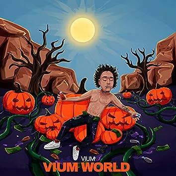 VIUM WORLD