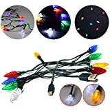 Zakball Multicolor Christmas LED Lights, Merry Christmas Light LED USB Cable DCI Charger Lighting Cord, Glow in The Dark (for Type-c)