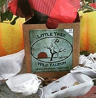 Little Tree Wild Yaupon 12 Tea Bag Box