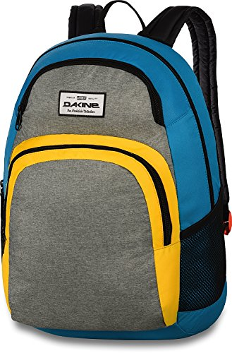 Dakine Central 26L Rucksack, Radness