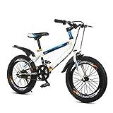 Bicicleta para niños Caixia Deporte al Aire Libre Asiento Ajustable y asa para niños de 4 a 12 años 18 20 Pulgadas Edición clásica niñas(Size:20inch,Color:C)