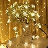 Luci natalizie luci da esterno con stringa di neve luci da festa per interni luci fiabesche LED luci a stringa usb 10m100 led