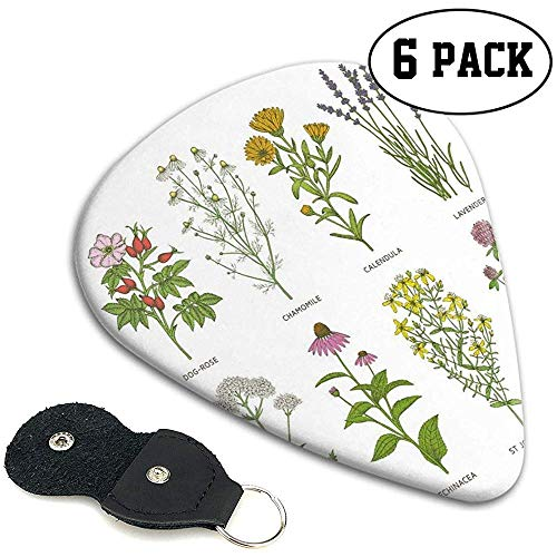 Plektren 6 Stück, süße Naturkosmetik Blumen mit Namen Hund-Rose Kamille Calendula Lavendel