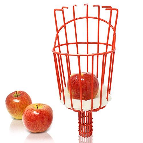 Coglifrutta Iceberk – Pratico raccogli frutta telescopico per la raccolta della frutta, compatibile con la cesoia telescopica per la potatura (solo cesta)