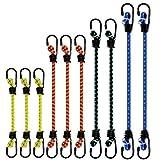 PHYLES Juego de 10 Cuerdas elásticas, Correas elásticas con Ganchos, para caravanas, campamentos, caravanas, maleteros, portaequipajes