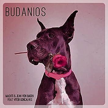 Budanois