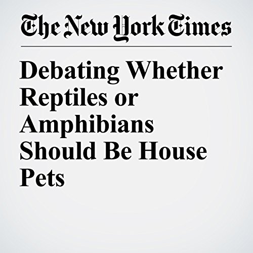Debating Whether Reptiles or Amphibians Should Be House Pets copertina