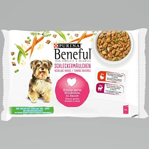 BENEFUL Schleckermäulchen Hundenassfuter, 10er Pack (10 x 400 g)