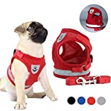 FeiLuo Dog Harness Universal Chest Strap and Leash Set, Soft Mesh Padded Pet