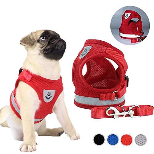 FeiLuo Hundegeschirr und Leinen Set für Hunde, Weich Mesh Gepolstert Geschirr für Welpen und Katzen, Reflektierende Verstellbare Atmungsaktive Brustgeschirr für Gehen, Laufen, Training (XS, Rot)