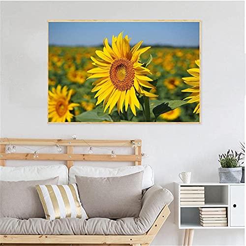 SXXRZA Obra de Arte para el hogar 40x60cm Sin Marco Hermosa Pintura Moderna Paisaje Natural Hermosas Flores Impresión en Lienzo Girasol Puesta de Sol Decoración para Sala de Estar
