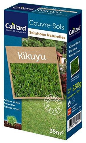 Caillard PFCM18565 Graines de Kikuyu 250 g 35 m²