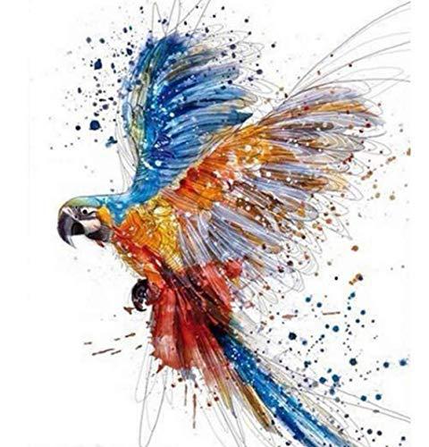 Farbige FliegenPapagei Malen Nach Zahlen Diy Malen Nach Zahlen Für Erwachsene Wanddekor Leinwand Malerei 40X50 Cm