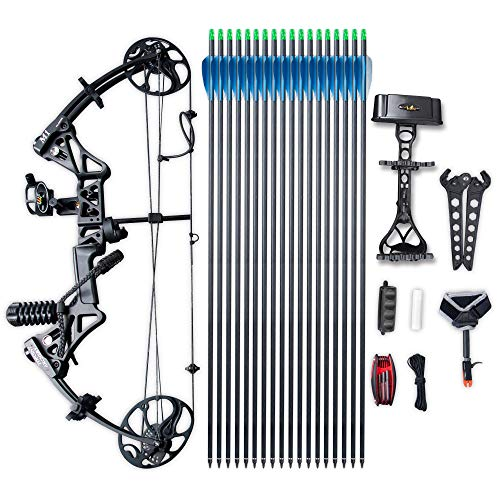 Compound Bow TOPOINT Archery M1 Package, 19'-30' Draw Length,19-70Lbs Draw Weight,320fps IBO Limbs Made in USA (Black)